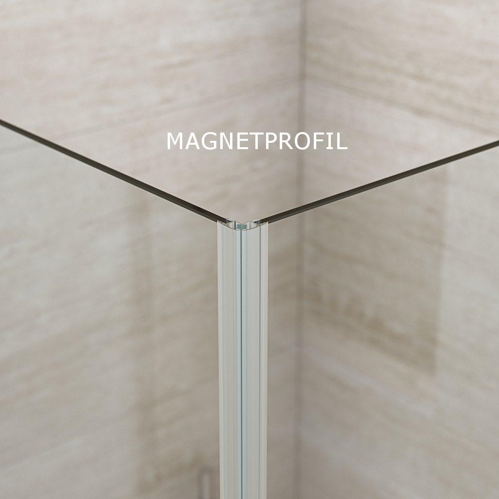 duschkabine eckeinstieg mit 2 faltt ren modell b b match dansani bad elegant. Black Bedroom Furniture Sets. Home Design Ideas